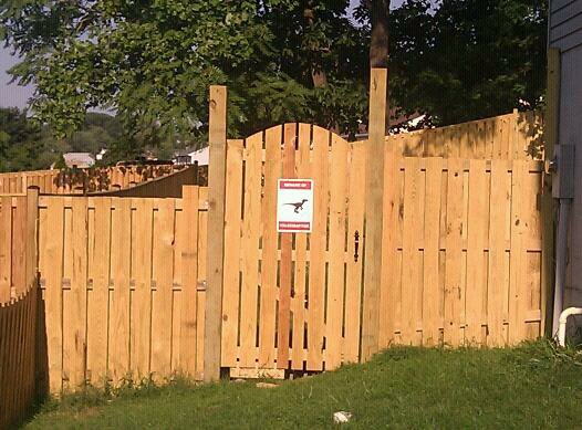 Beware of Velociraptor sign on my fence